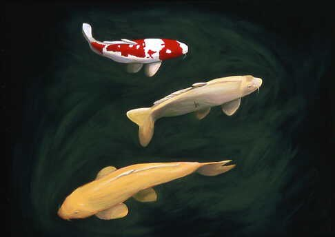 "Carp #34, 2004 acrylic on canvas 36"" x 48"""
