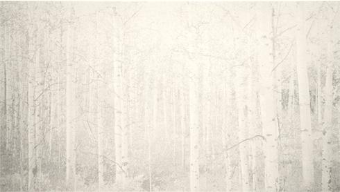 """Cameron Martin  """"Balentane,"""" 2012  lithograph, 26/30  22 11/16"""" x 35 1/4"""""""