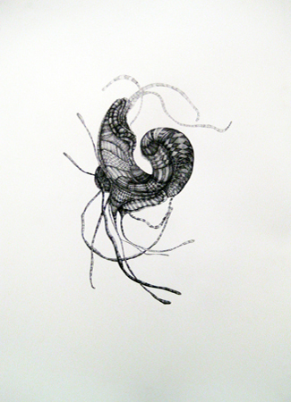"Julia Fernandez-Pol ""Decapod,"" 2009 ink on paper 30 1/4"" x 24 1/4"""