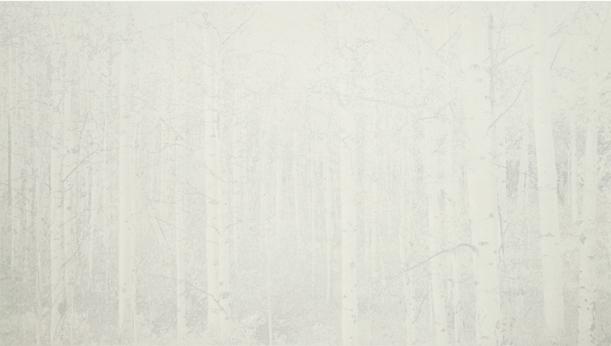 """Balentane, 2012 lithograph (26/30) 22 11/16"""" x 35 1/4"""""""