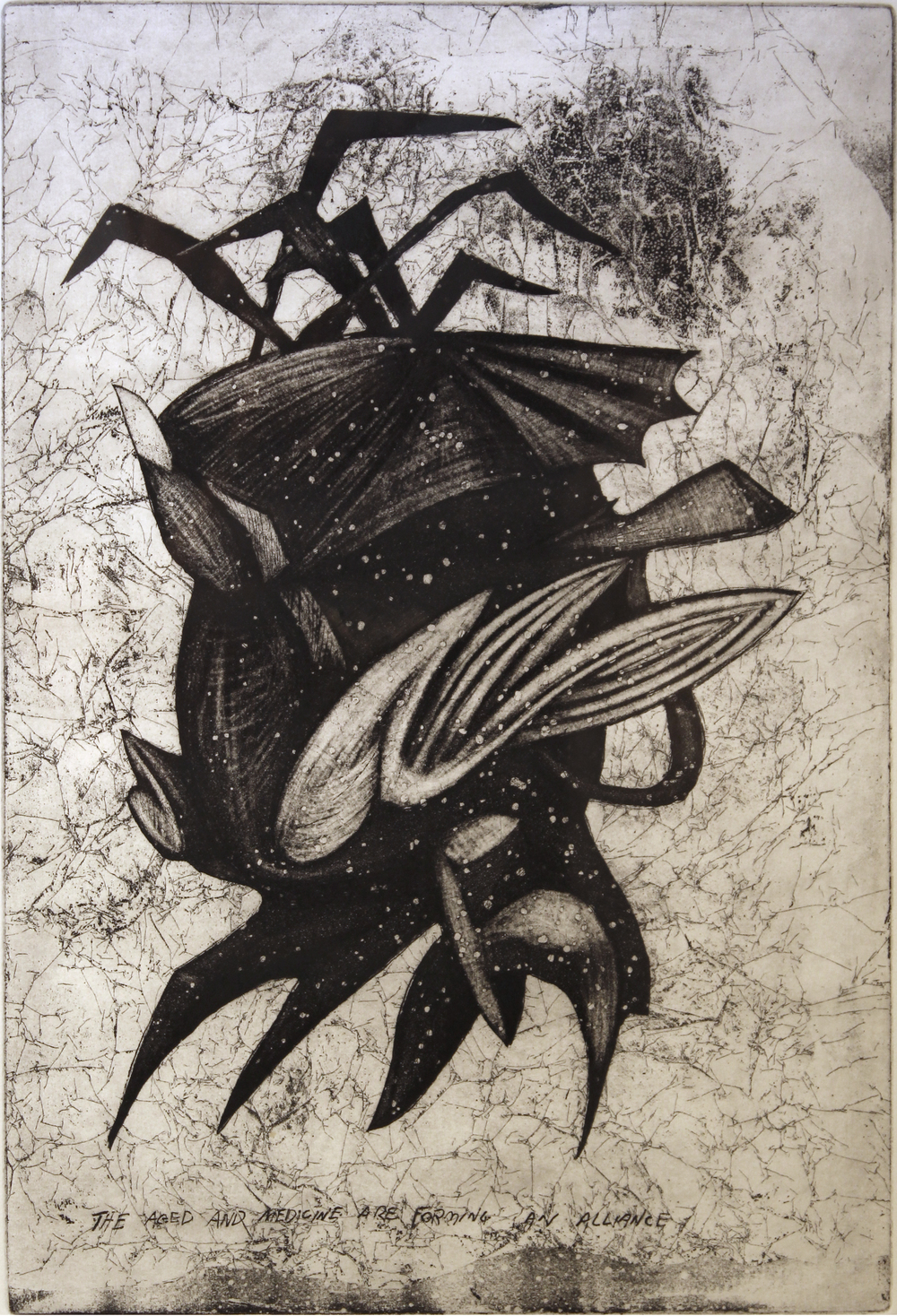 "Jim Nickel (BIO) ""The Aged and Medicine are Forming and Alliance,"" 1996  etching 3/25 27"" x 21"""