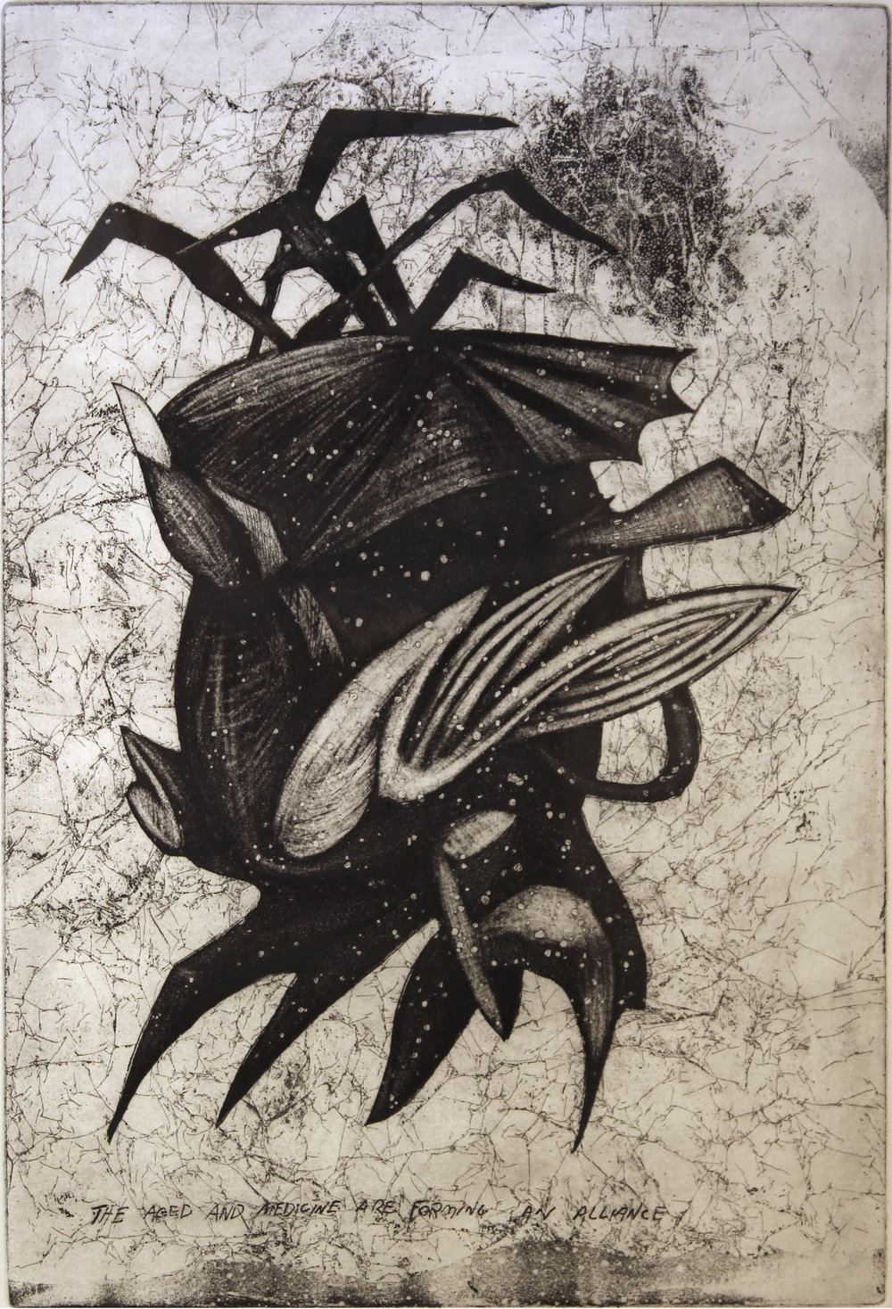 "The Aged and Medicine Are Forming an Alliance,   1996   etching 3/25  27"" x 21"""
