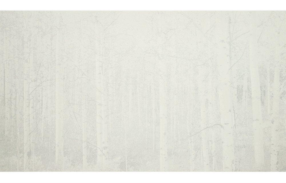 """Cameron Martin (BIO),Balentane, 2012, lithograph, 22 11/16"""" x 35 1/4"""""""