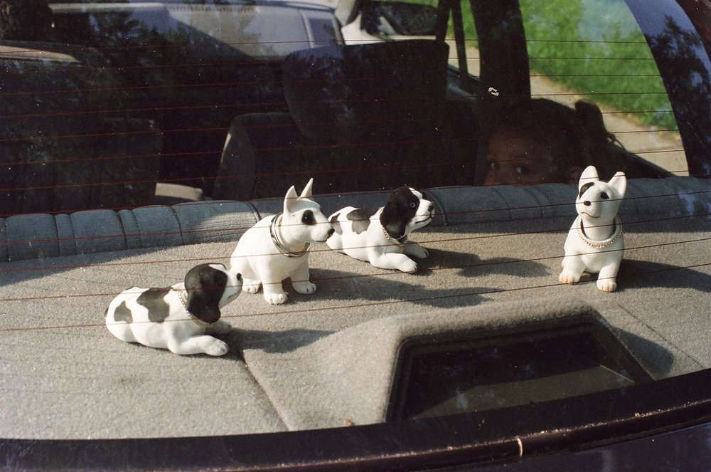 "Harry Roseman   (BIO)  ,   Nodding Dogs  , 2003, c-print 2/6, 18"" x 22"""