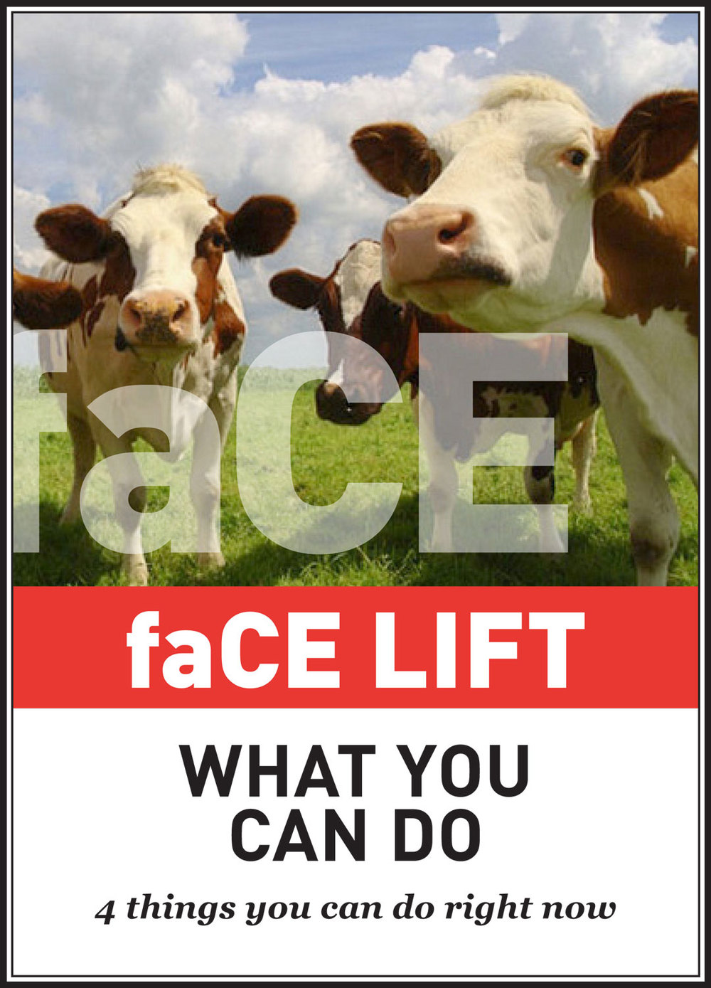 faCEs-IntroBlocks-LIFT.jpg