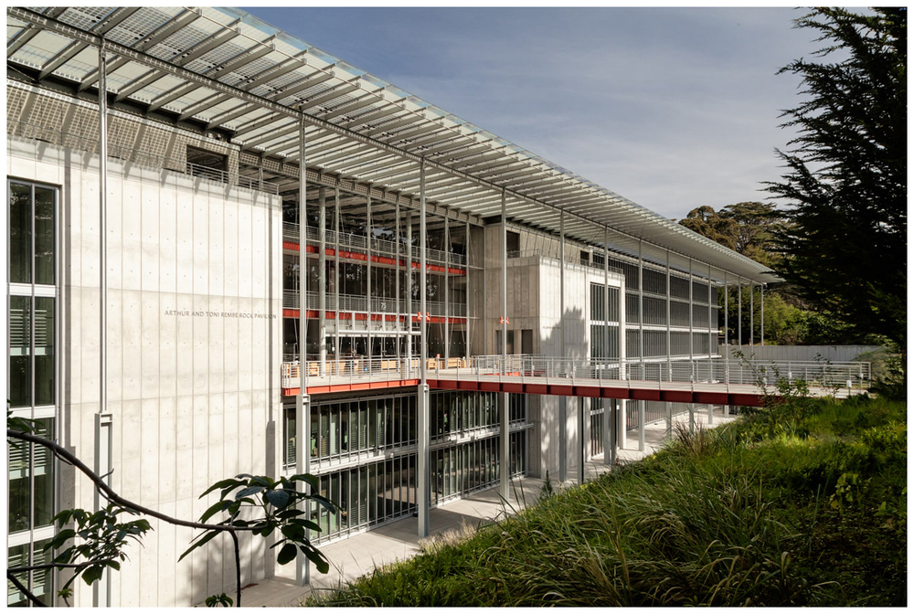 Academy of Science, San Francisco: Eastern Facade, North Wing
