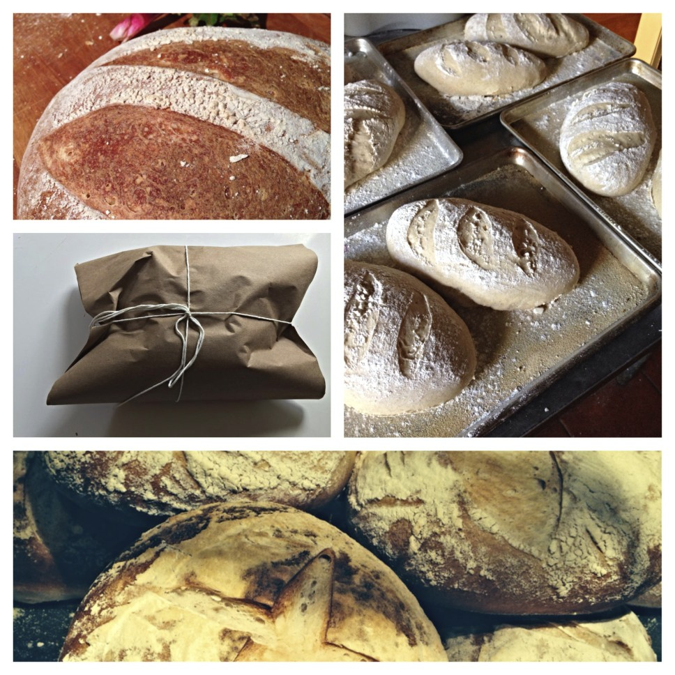 The Thirsty Fork bakes artisan breads like these daily.  Random Acts of Bread-Ness happen in Sacramento weekly!
