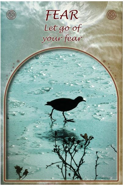 Tyr's Day May 12 th 2015, FEAR: LET GO OF YOUR FEAR