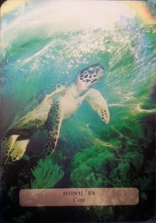 THEME OF THE WEEK FOR JULY 25 TH- 31 ST 2015: HONU'EA-THE SACREDSEA-TURTLEMOVES THROUGHTHE CYCLEOF VICTIMIZATION,SOVEREIGNTY&          RECOGNITION