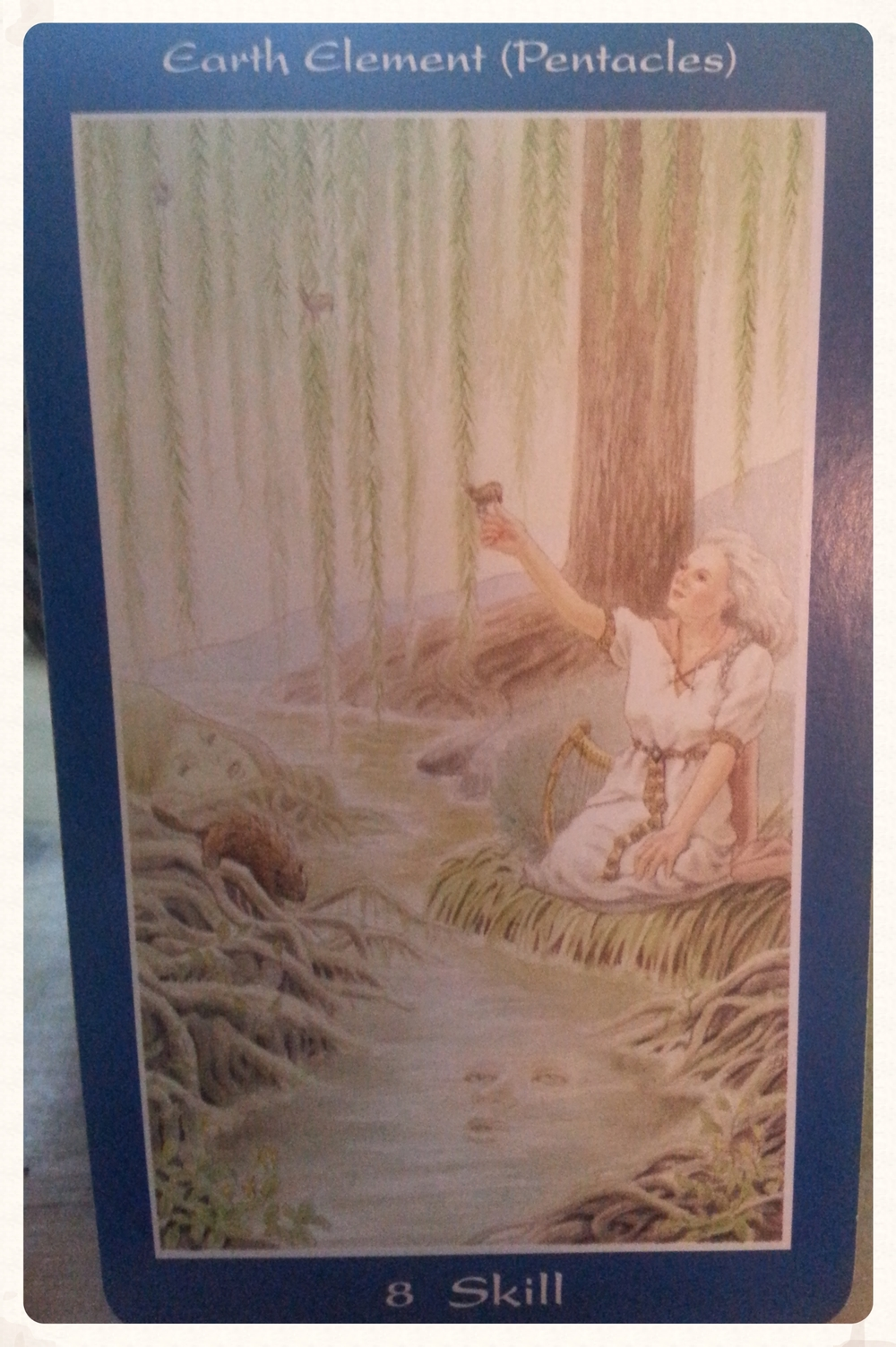 ODIN'S DAY AUGUST 12TH 2015: SKILLS CARD 8 OF EARTH- HARVESTING, BEING             CENTERED, PROJECTS & IDEAS