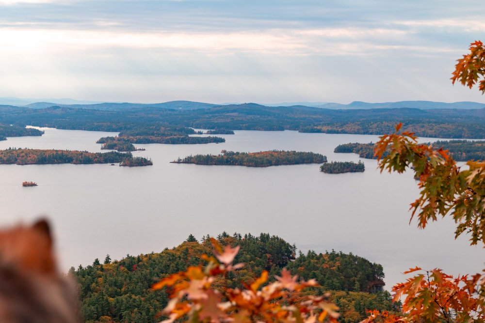 20181023-New Hampshire (Day Two)-0020-Squarespace.jpg