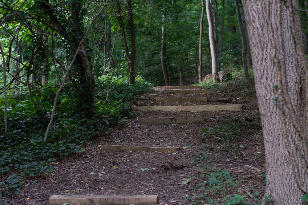The entrance to the trails