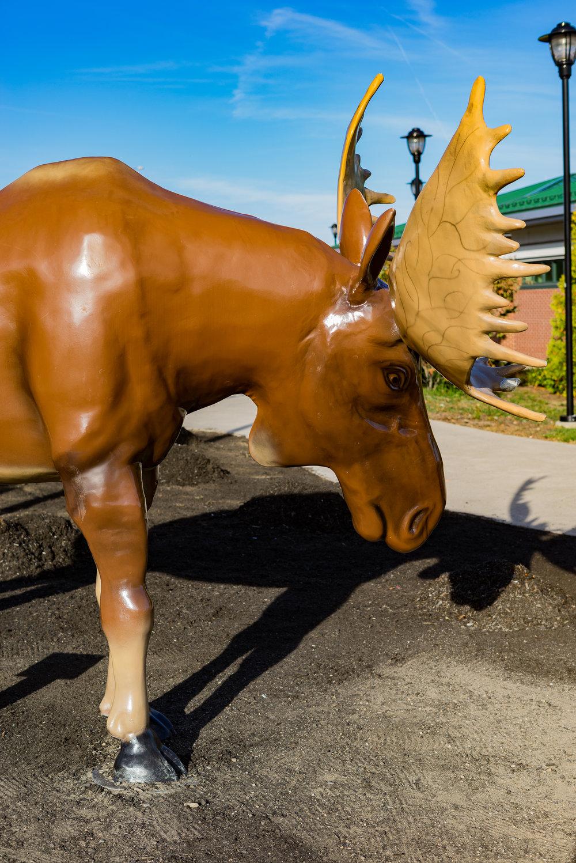 Moose Statue