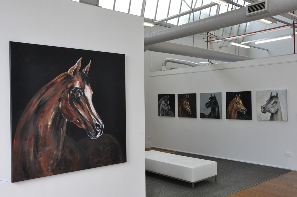 Horse portraits 2013 / 14