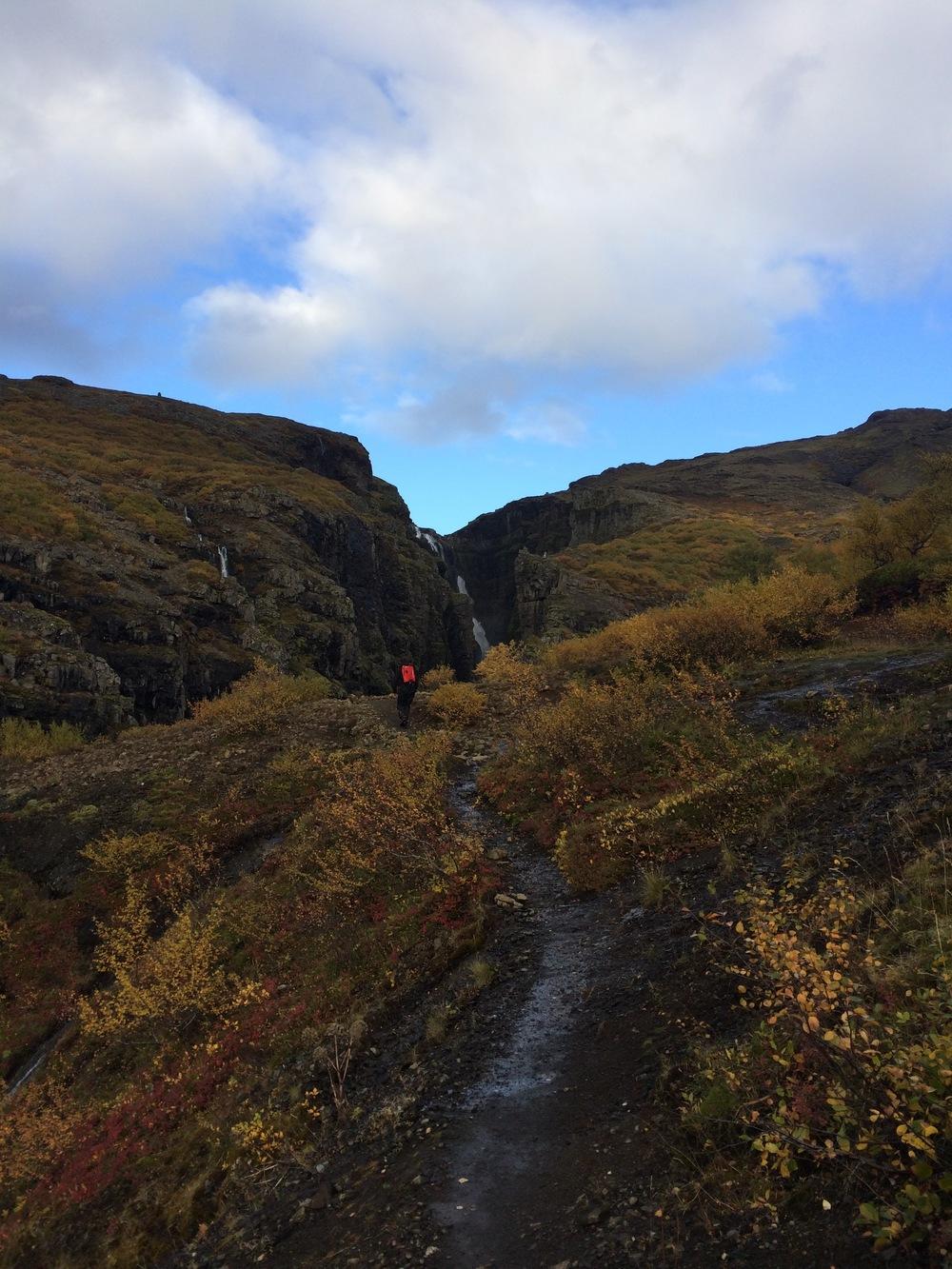 LindsayBMarsh_Glymur Falls