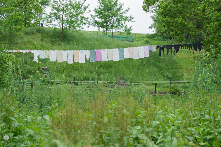 WEB_Amish_Clothesline_2.jpg