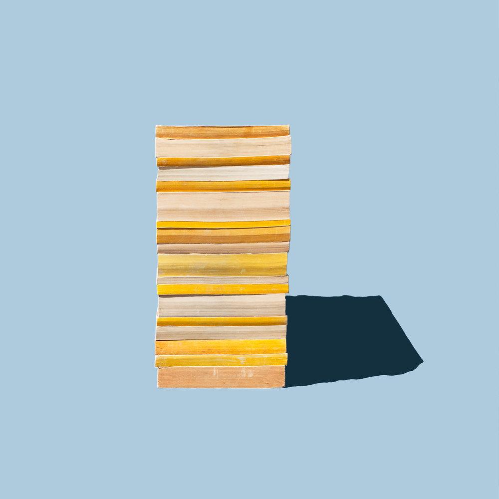 """Well-Read, 20"""" x 20"""", Archival Inkjet Print, 2017"""