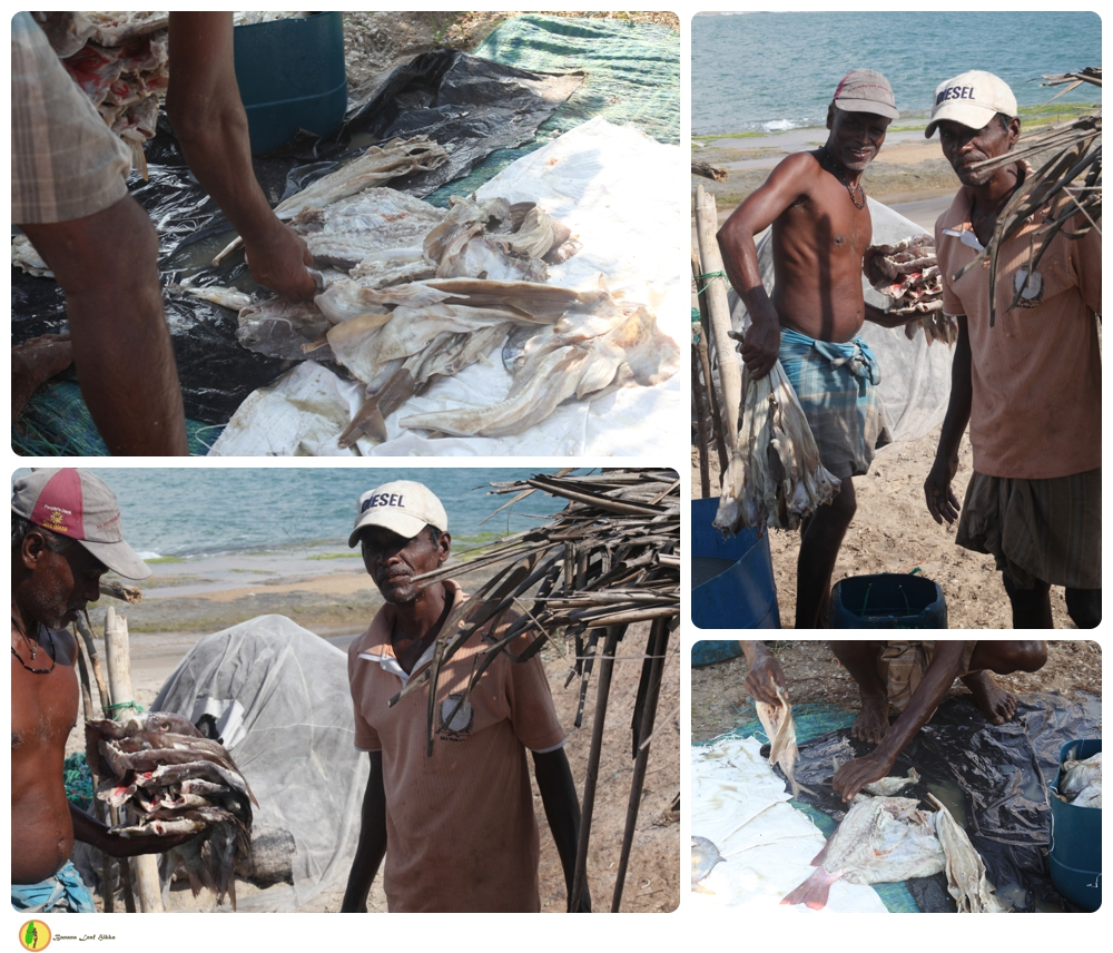 Fishermen Okanda Sri Lanka