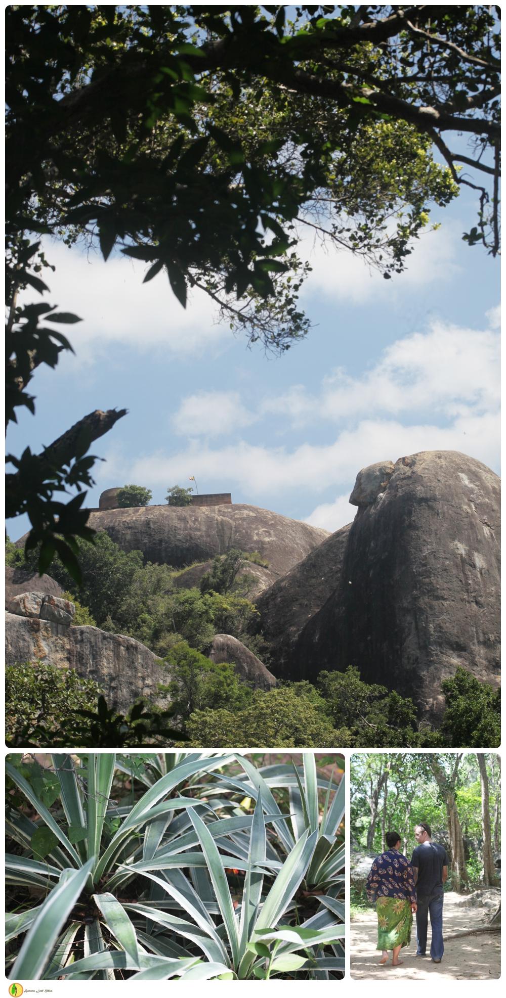 Kudumbigala Monastery complex