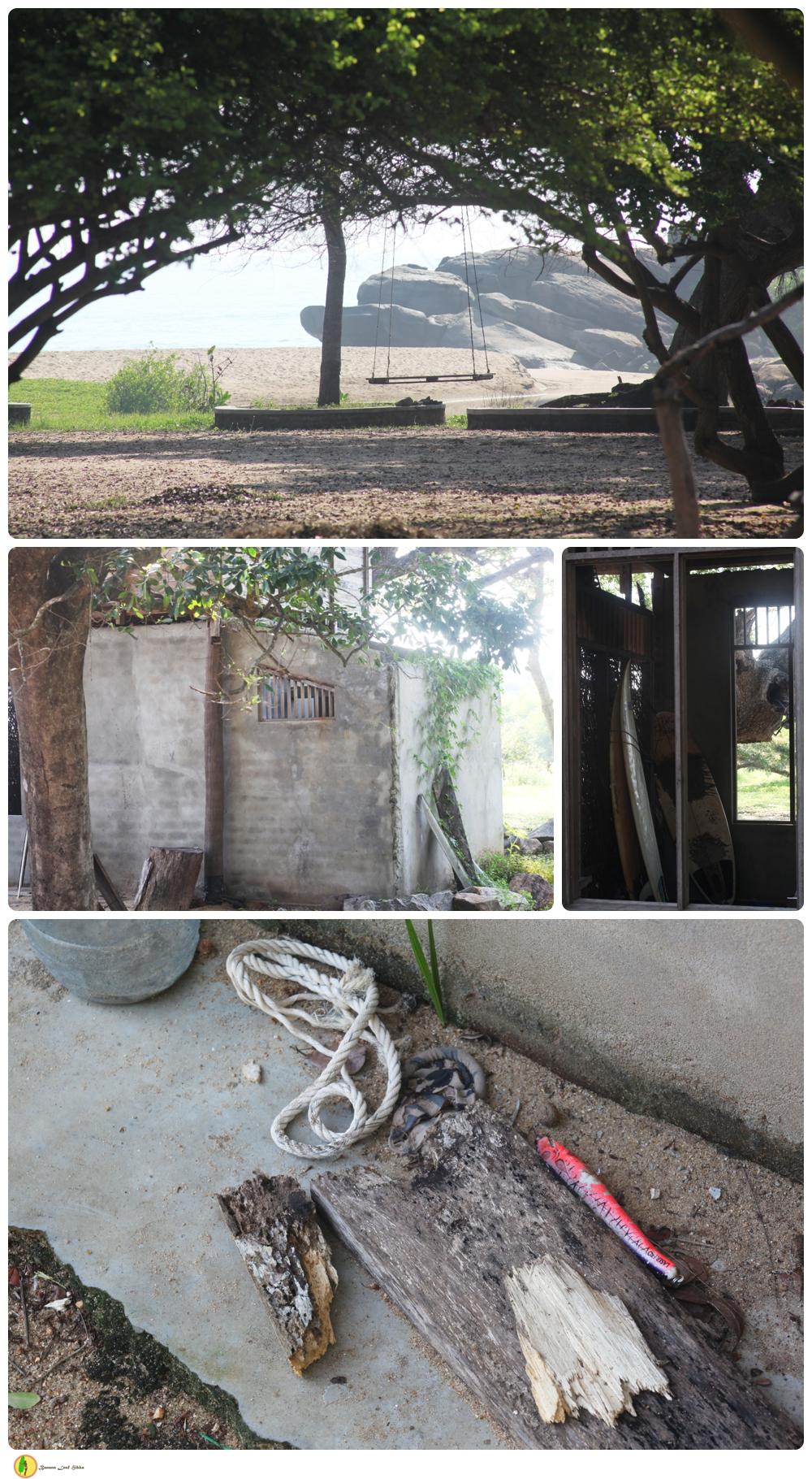 Peanut farm Sri Lanka
