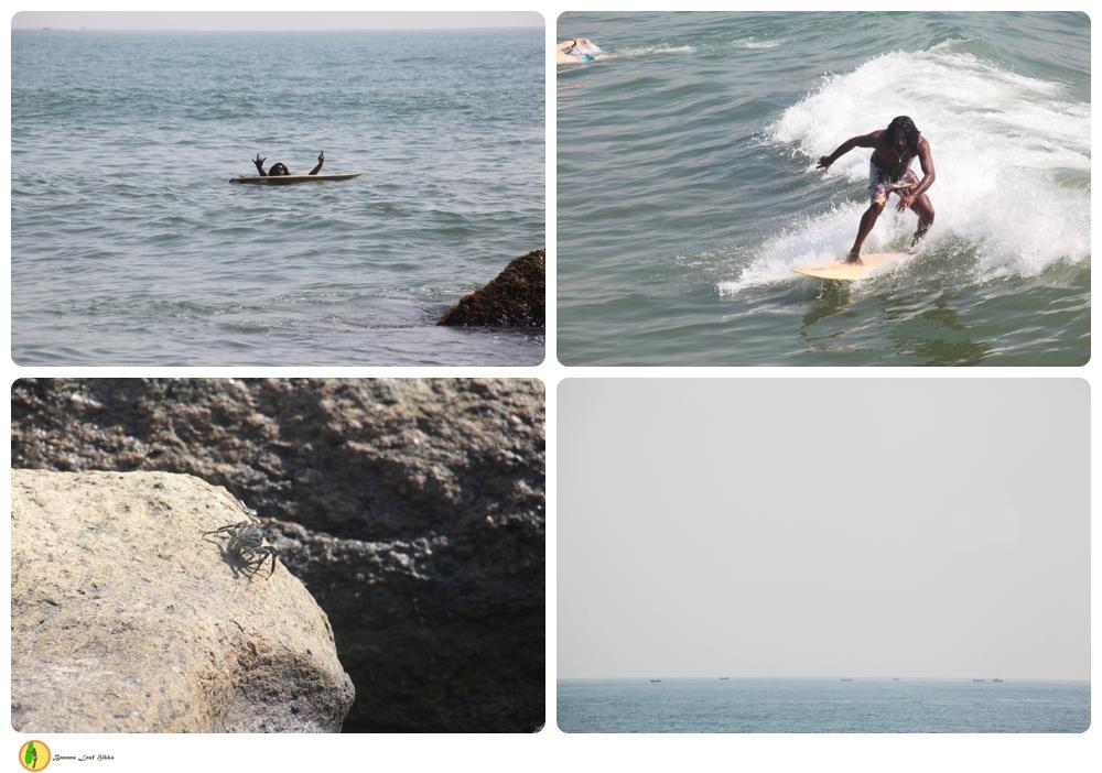 Surf Peanut Farm East Coast Sri Lanka