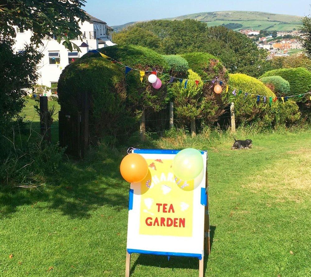 tea garden3.jpg