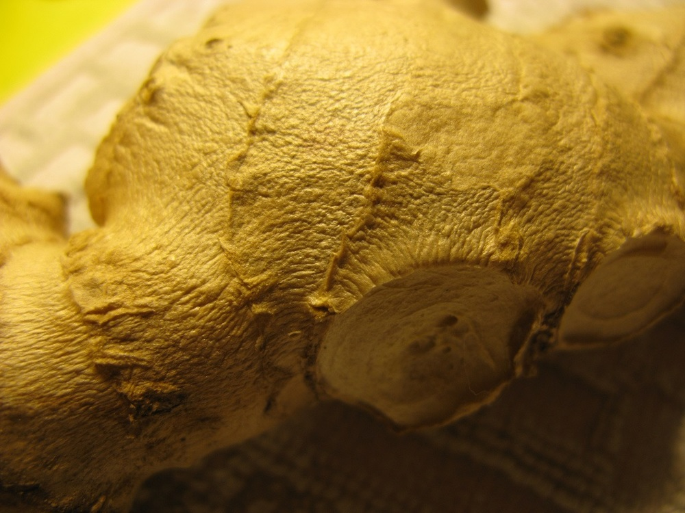 Detail of ginger - Creative Commons image by Miran Rijavec