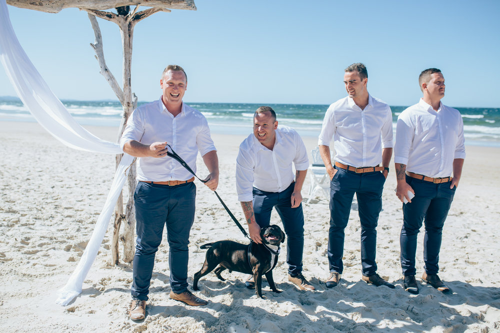 dogs at weddings Byron Bay celebrant 1.jpg