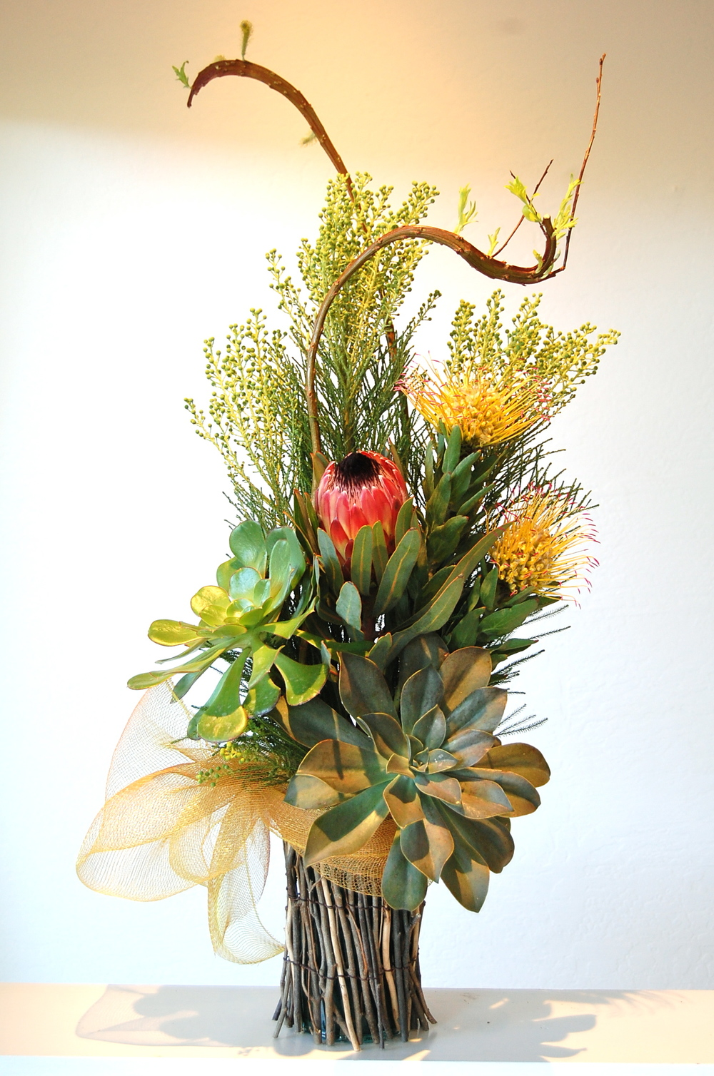 Willow Twig Vase with Succulents + Tropicals