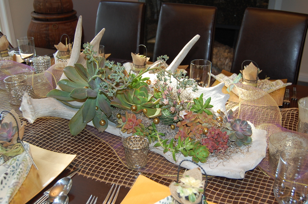 Moose Antler Centerpiece Filled With Succulents