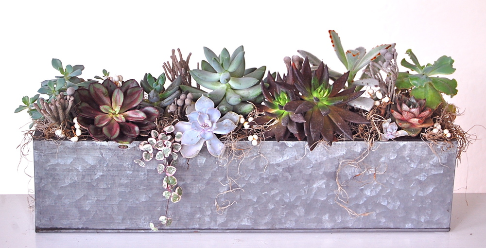 "GALVANIZED METAL RECTANGULAR PLANTER 21""w x 10""h –$165."