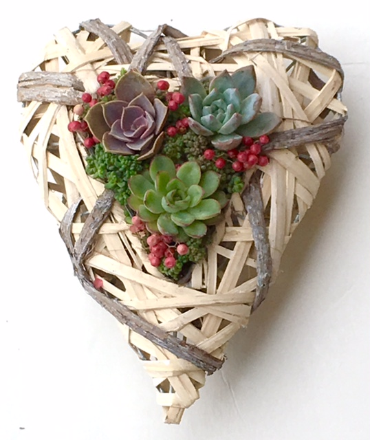 "HEART BASKET PLANTING (TABLETOP OR WALL HANGING) Lg: 11""w x 14"" d x 5""h- $65 / Sm: 7.5""w x 10""d x 4""h- $48."