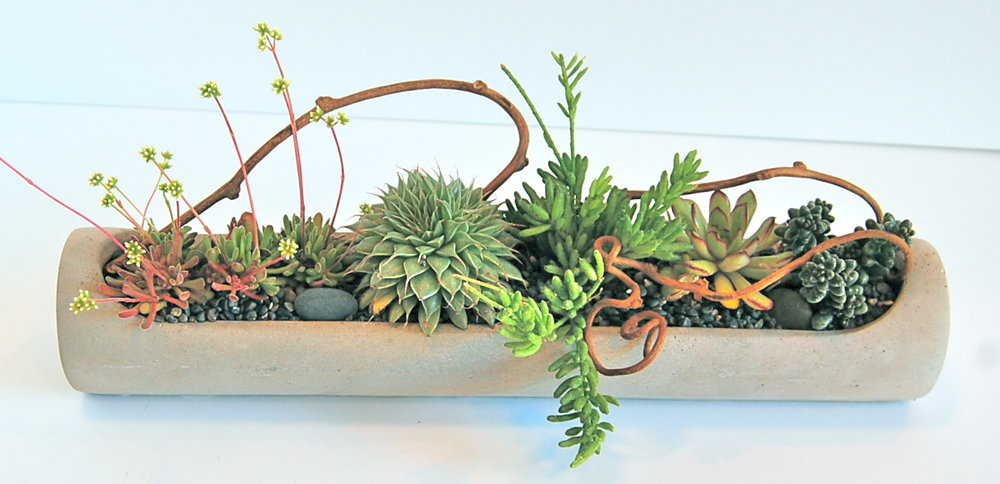 "CONCRETE PIPE PLANTER 16""w x 3""d x 4""h- $ 70. (as shown; out of stock until mid-August) /  32""w x 5""d x 7""h- $209."