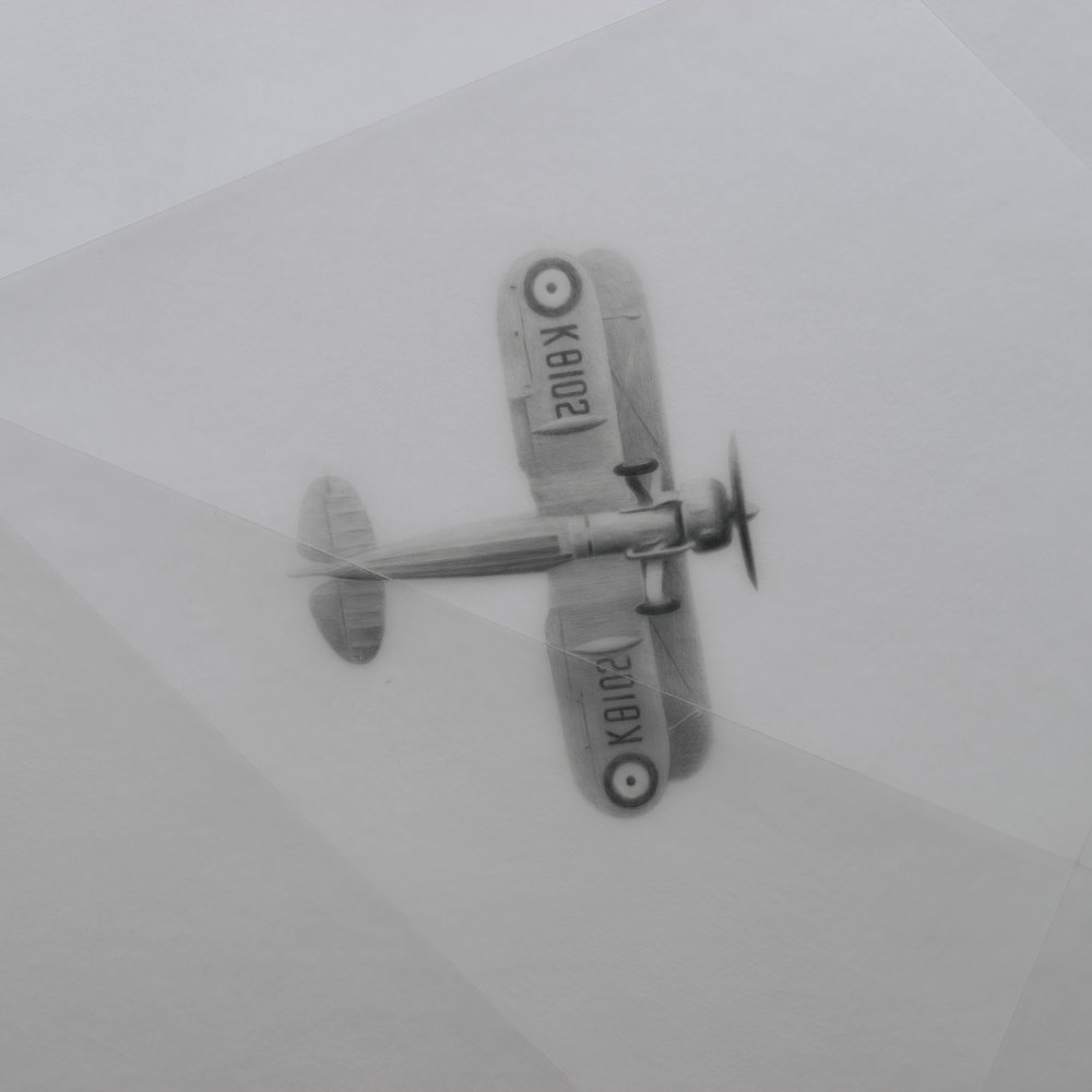 PAPER CUP    (detail)   2015 H60, W60 cm Pencil, polycarbonate