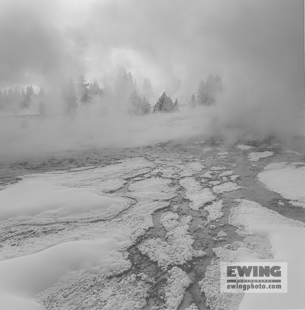 Geyser Flow, West Thumb, Geyser Basin Yellowstone National Park, Wyoming
