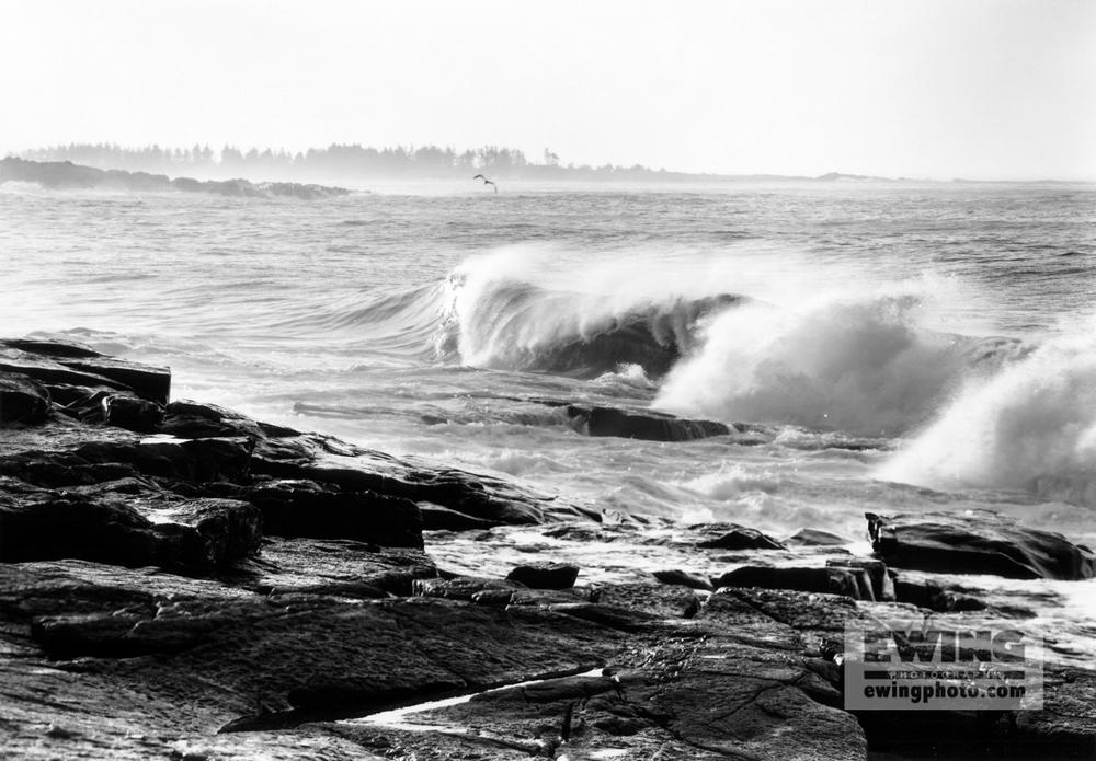Hurricane Felix Schoodic Point, Maine