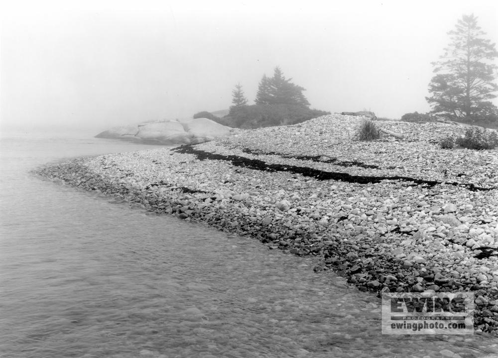 Shoreline Fog, Bar Island Corea, Maine