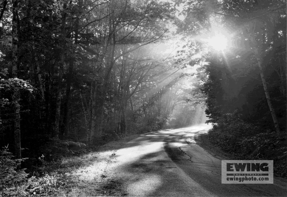 Harriet's Road Sorrento, Maine