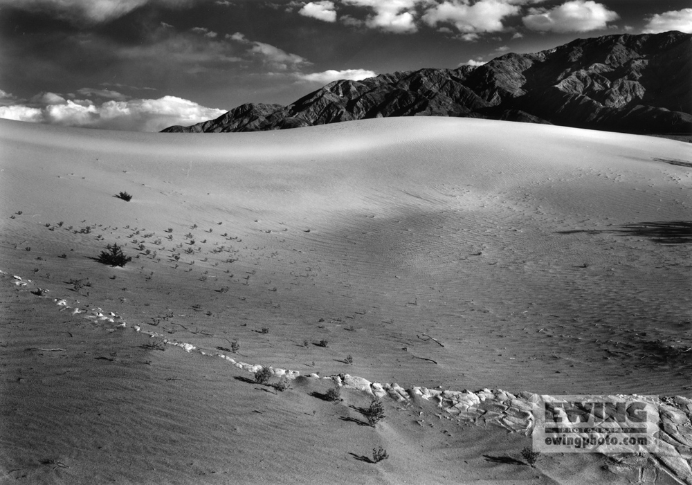 Mesquite Flat Sand Dunes Death Valley California