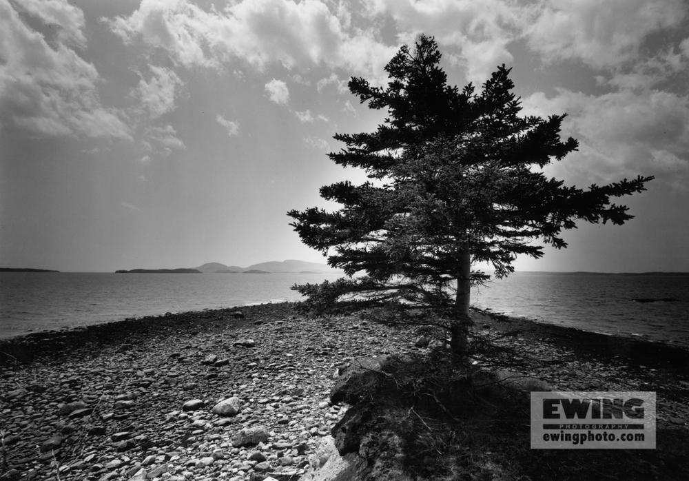 Tip Of Thrum Cap Frenchman Bay, Maine