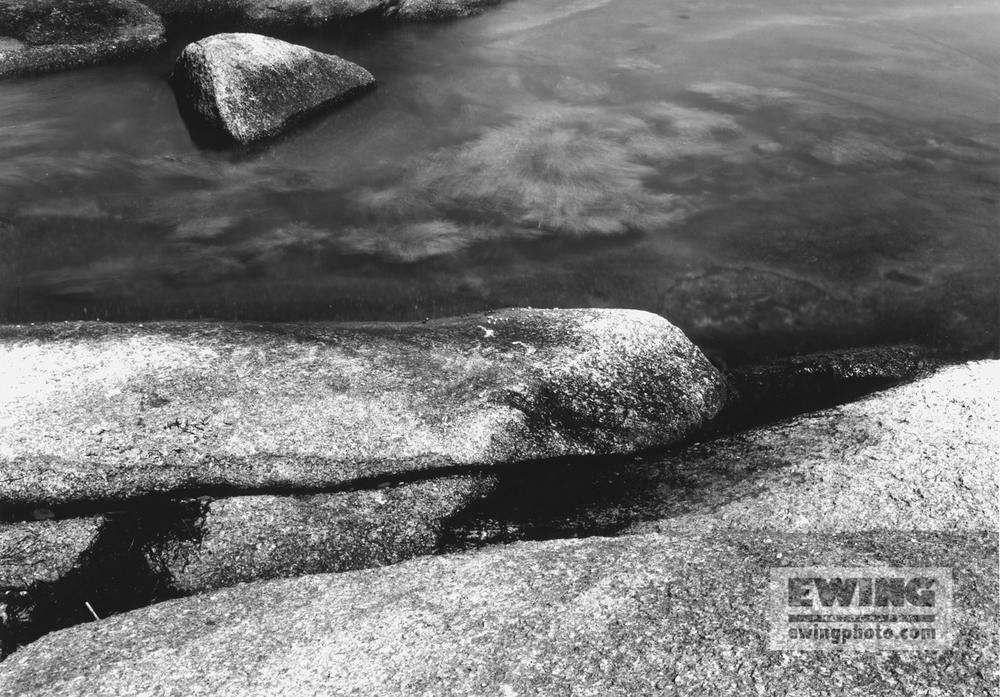 Tidal Pool Corea, Maine