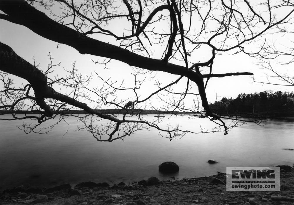 Little Johns Island, South Side Shoreline, Maine