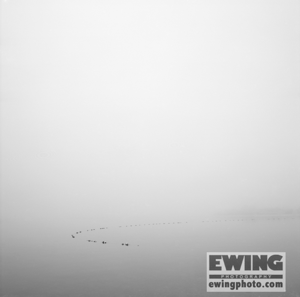 Swimming Boundary Tiverton, R.I.