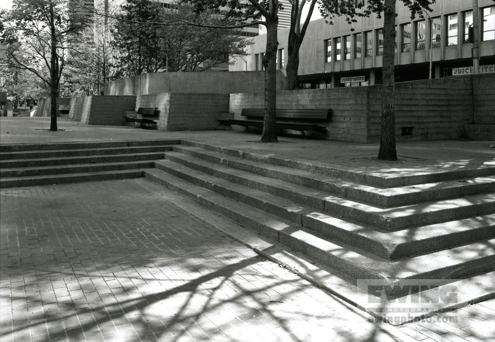 Skyline Park #35