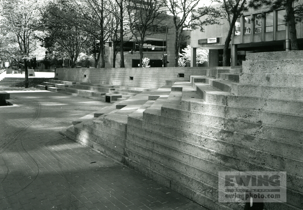 Skyline Park #40