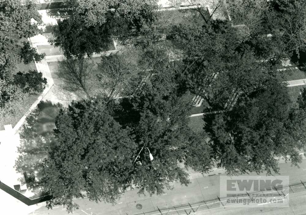 Skyline Park #73