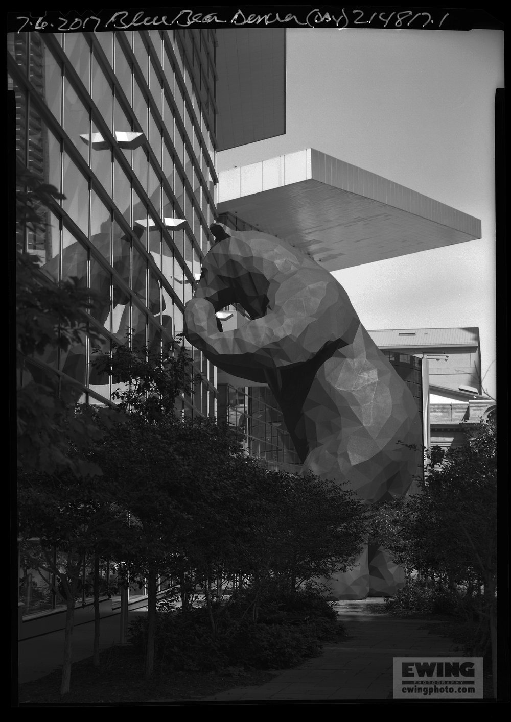 Blue Bear at Convention Center