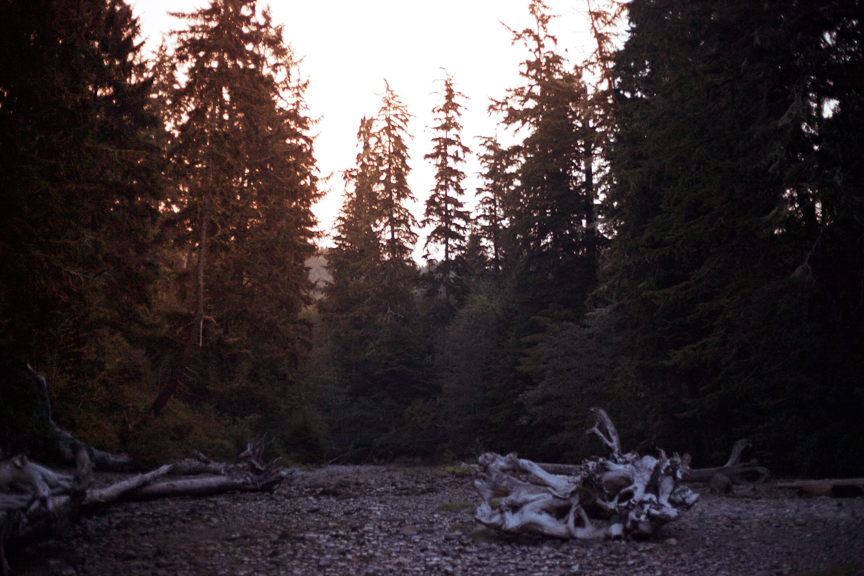 Sombrio Beach, Vancouver Island.   From the series   Warm Beer, Cold Women.       ©Alex Guiry 2012