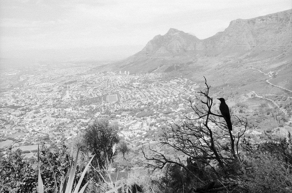 SouthAfrica_b5s60f12ftn.jpg