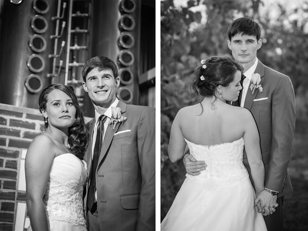 Bride and Groom at Flag Hill Winery in Lee, NH, photographed by Mike Sears Photography